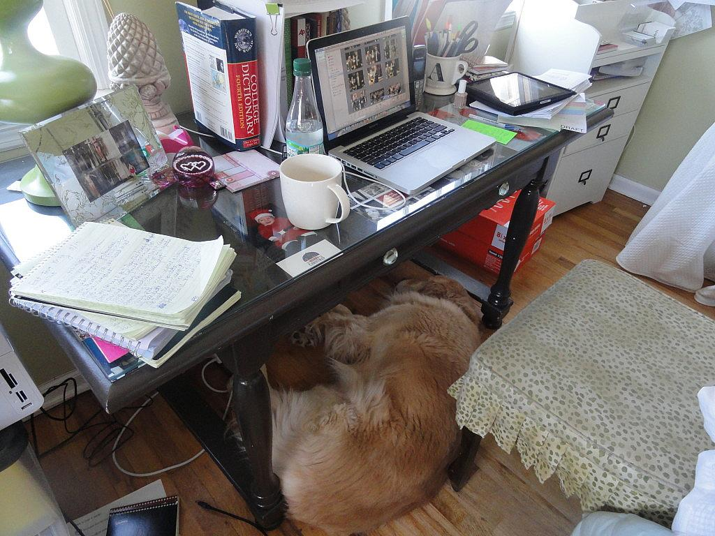 Rudy would shove himself under my desk while I worked rather than stretching out on his giant bed about five feet away.